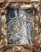 Barred Owl & Nature Collage Frame