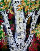 Birch Tree Portrait